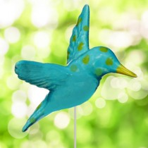 Turquoise Hummingbird