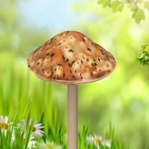 Safari Mushroom - Small